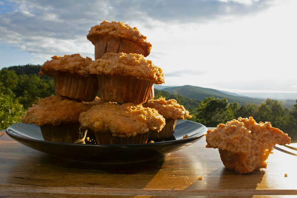applesauce muffins with mountain view