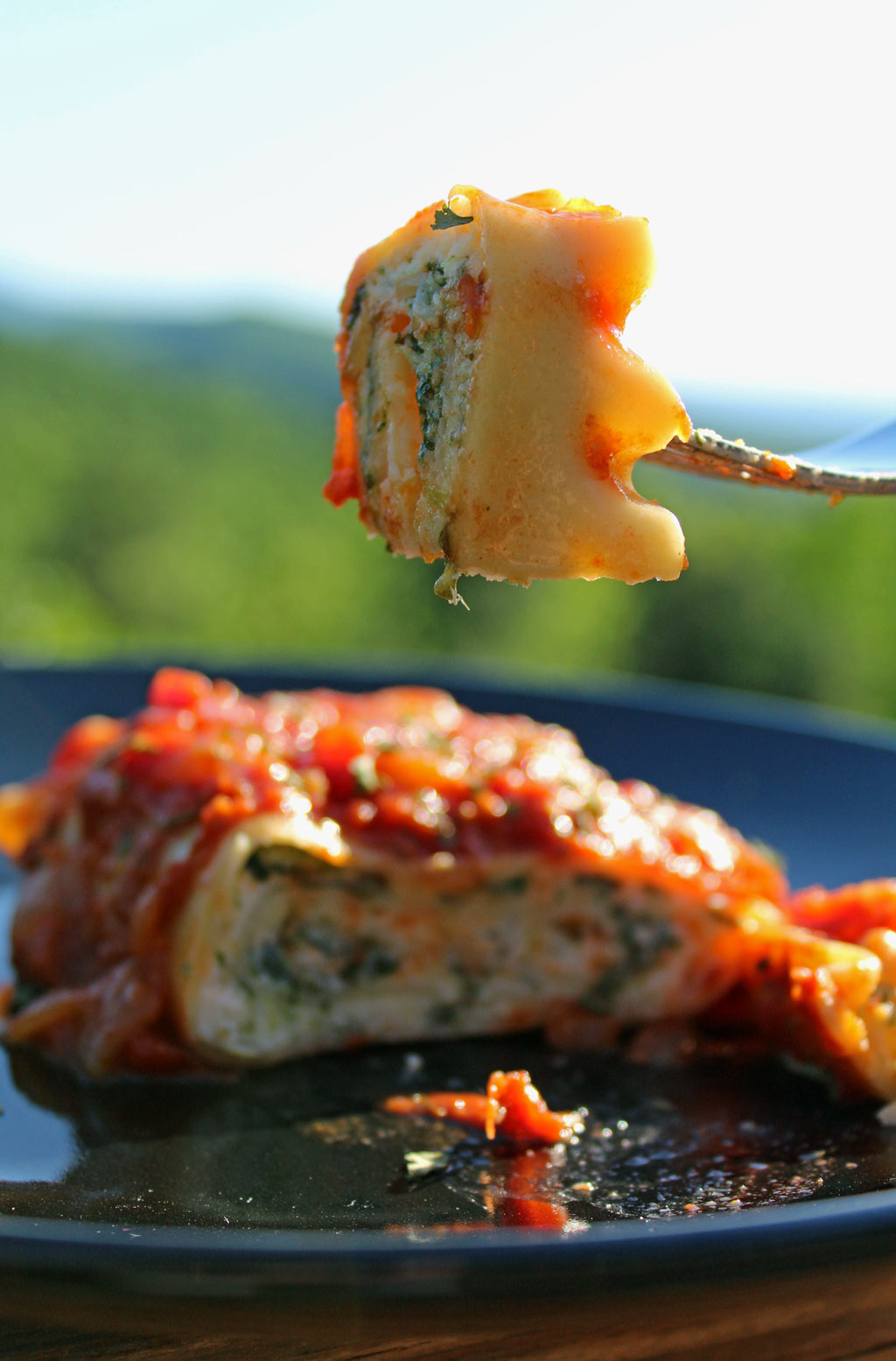 Spinach lasagna rolls: creamy ricotta and mozzarella cheeses mixed and fresh sauteed spinach, rolled inside lasagna noodles topped with marinara sauce. Yum!