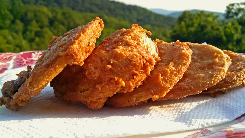 fried green tomatoes on plate with mountain view