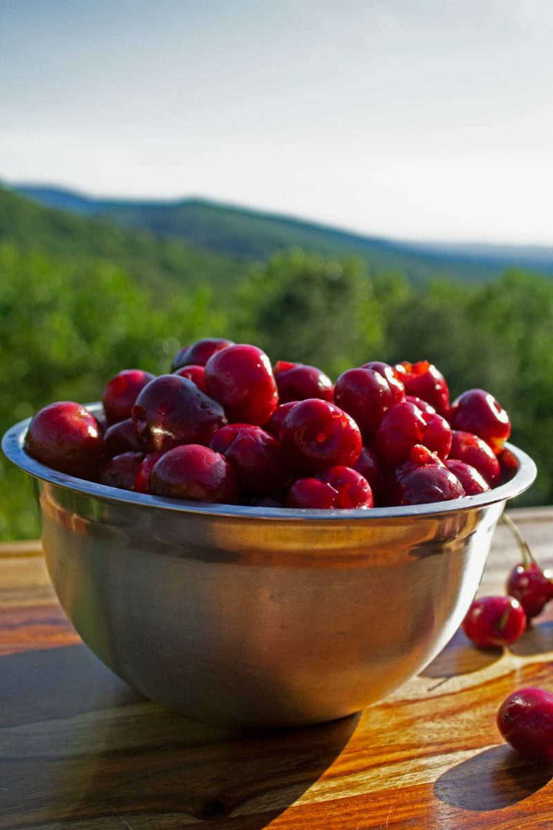 bowl of pitted cherries with mountain view