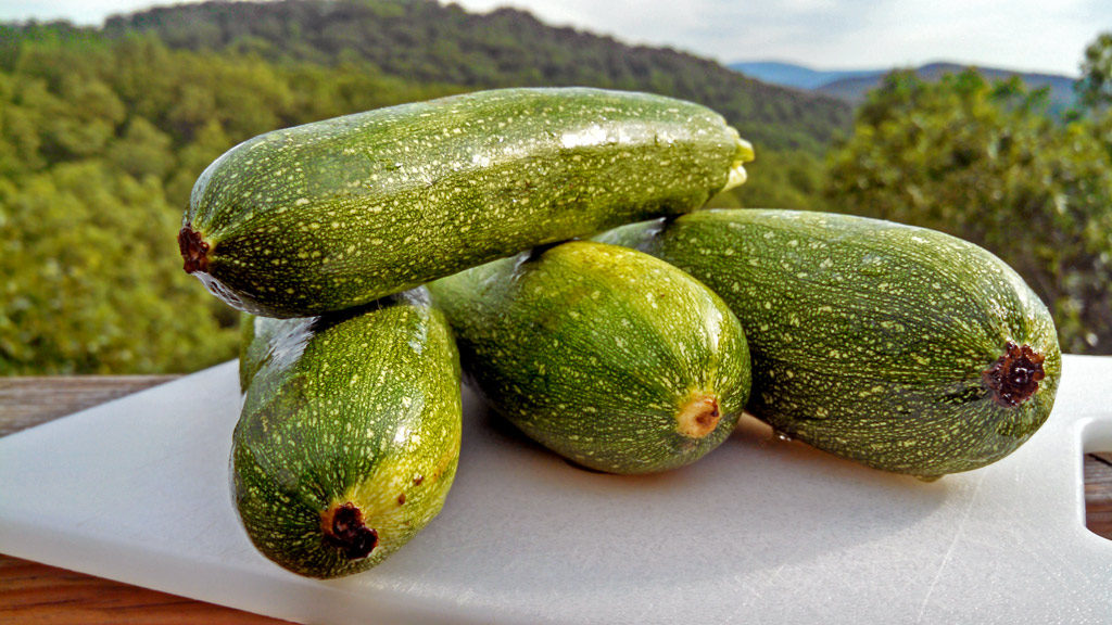 zucchini on cutting board with mountain view