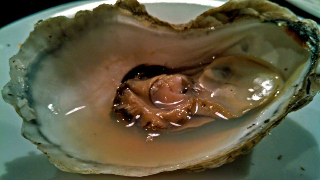 Oh Shucks! Raised on the Atlantic side of Virginia's eastern shore, Chincoteague Oysters are a full flavored oyster that pack an extremely salty punch. | TheMountainKitchen.com