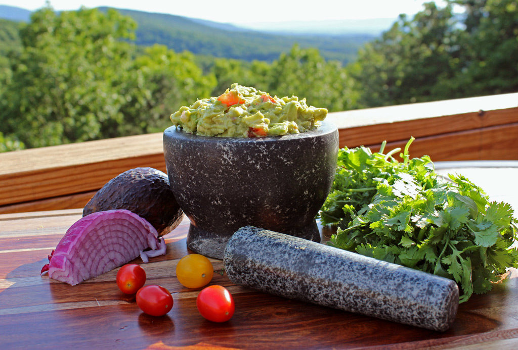 guacamole ready to eat with mountain view