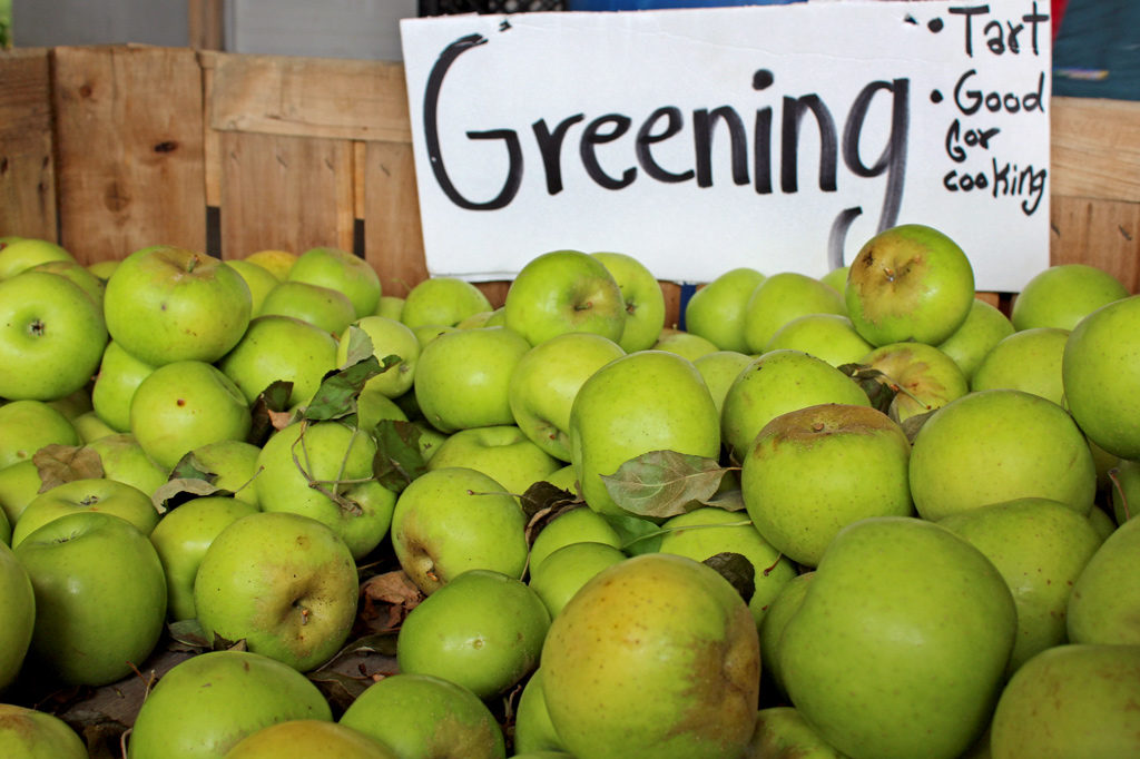 crate of greening apples