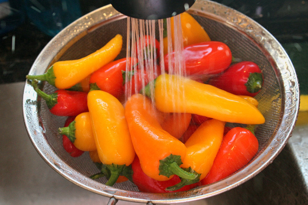 rinsing peppers under faucet