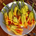 These delicate fried squash blossoms are filled with a creamy ricotta cheese mixture and dipped in a light batter, fried to a golden brown. They're amazing! | TheMountainKitchen.com
