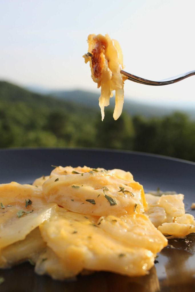 Tender potato slices laced with sweet onions smothered in a creamy cheese sauce with a hint of garlic. Potatoes au gratin the perfect side dish to any meal! | TheMountainKitchen.com