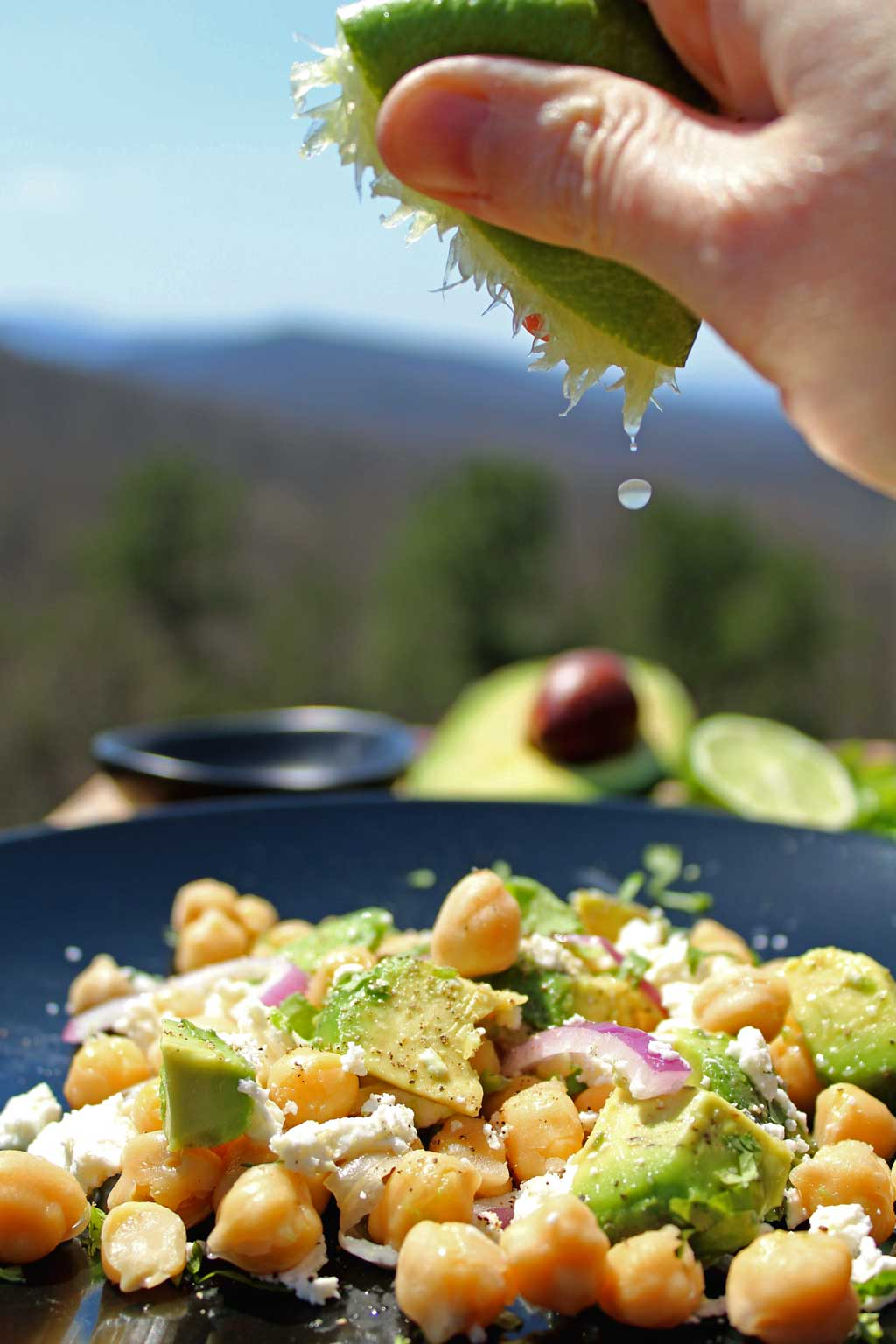 It only takes 5-minutes to make this delicious high protein, high fiber chickpea avocado salad. A vegetarian salad for a super healthy Meatless Monday meal!
