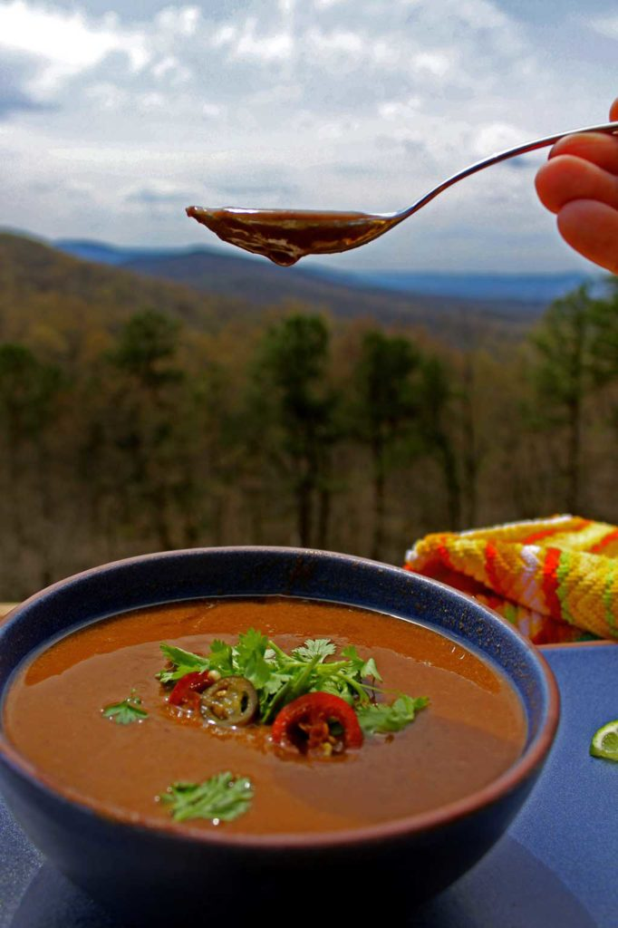 spoonful of black bean soup with mountain view