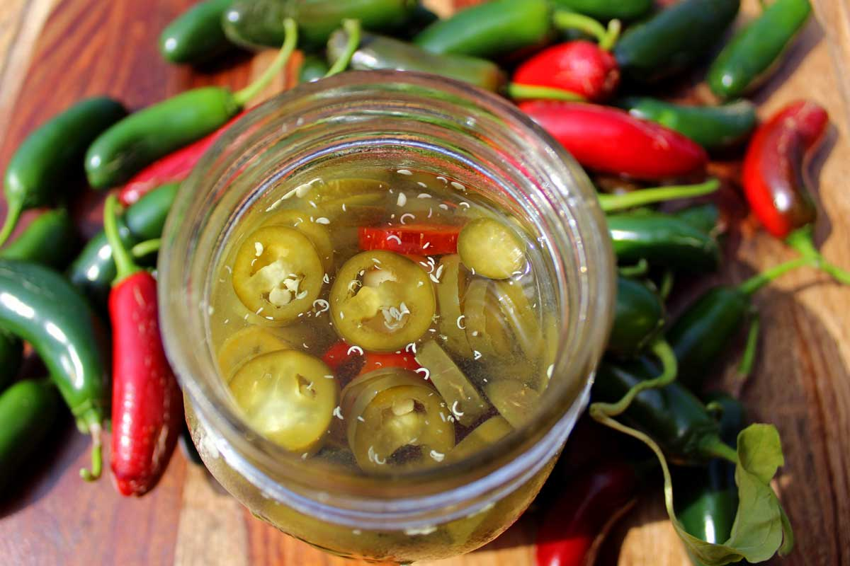 Pickled Jalapenos are a delicious addition to nachos, burgers, pizza, sandwiches, soups and so much more! Make a jar for now or a few to enjoy this winter!