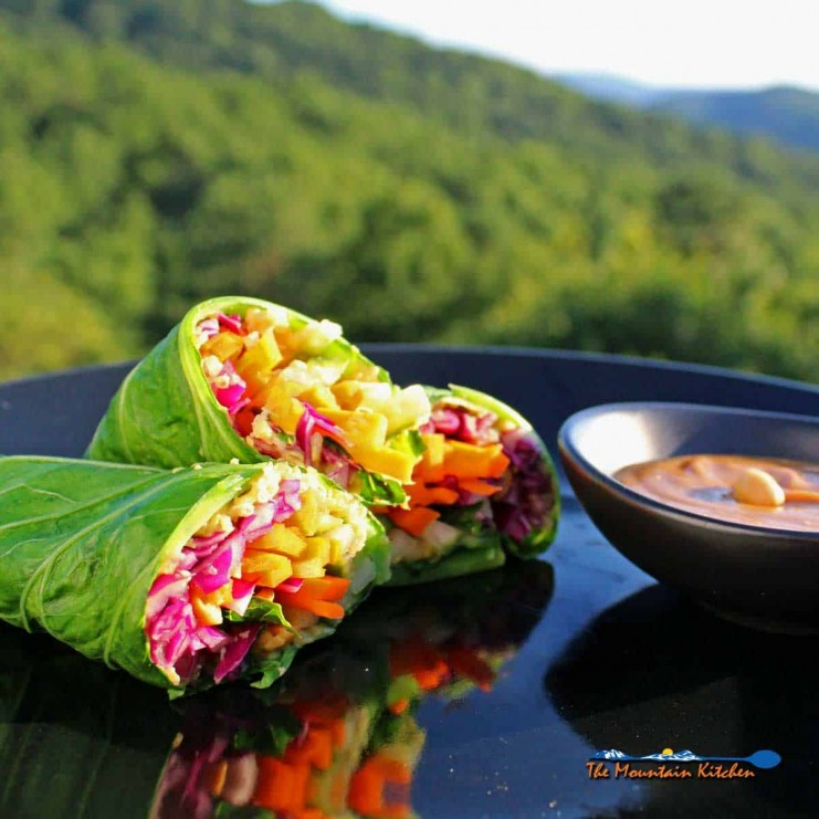 Rainbow Roll-up with peanut sauce and mountain view