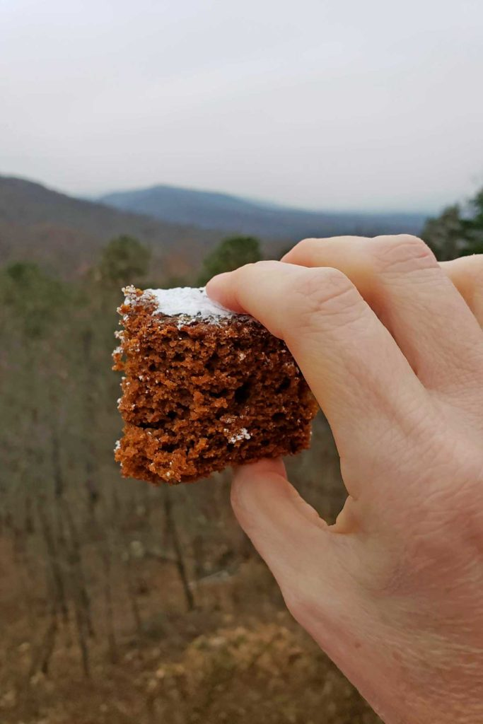 a slice of gingerbread cake with mountain view