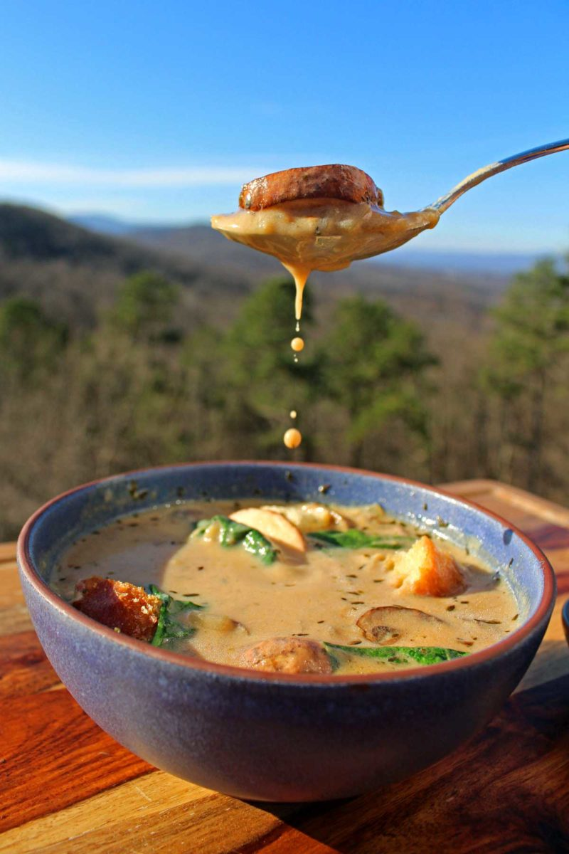 a dripping spoon of soup with the mountains in the background