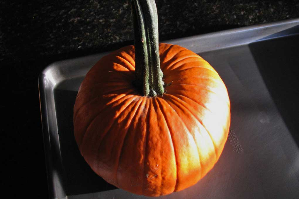 whole sugar pumpkin