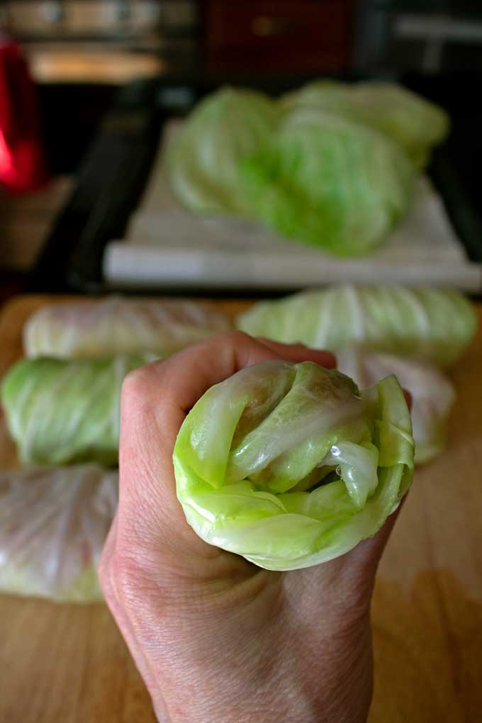 rolled cabbage leaf