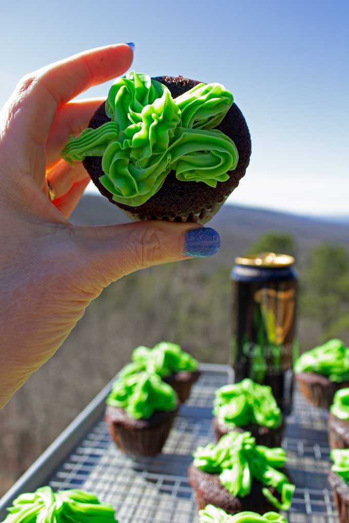 chocolate stout cupcake with mountain view