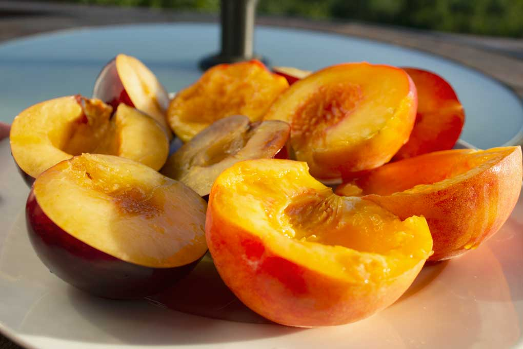 raw peaches and plums
