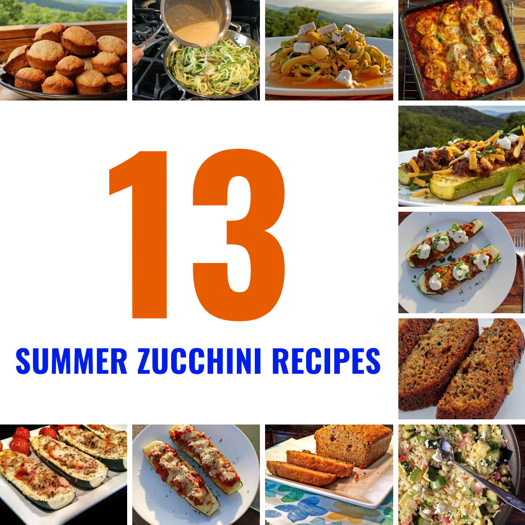 13 Delicious Summer Zucchini Recipes