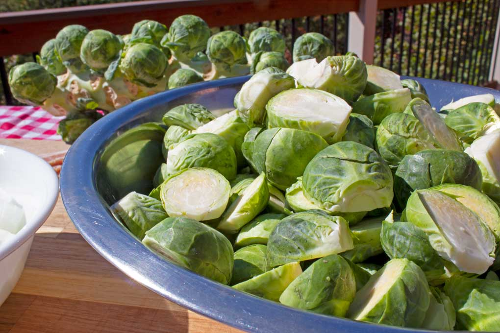 bowl full of trimmed and sliced brussels sprouts