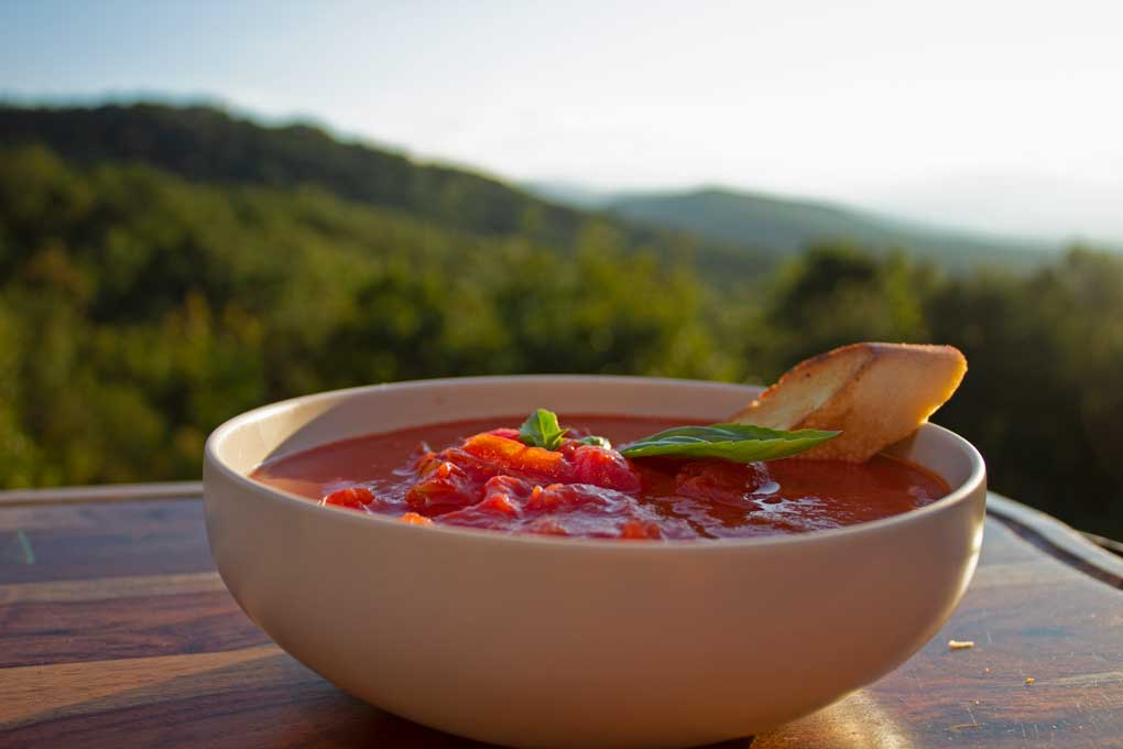 bowl of grilled tomato soup with mountain view