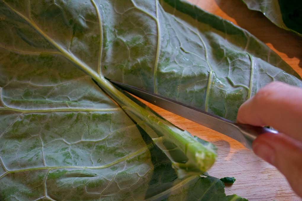 cutting stem from collard leaf